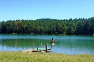 France Lac de Montbel
